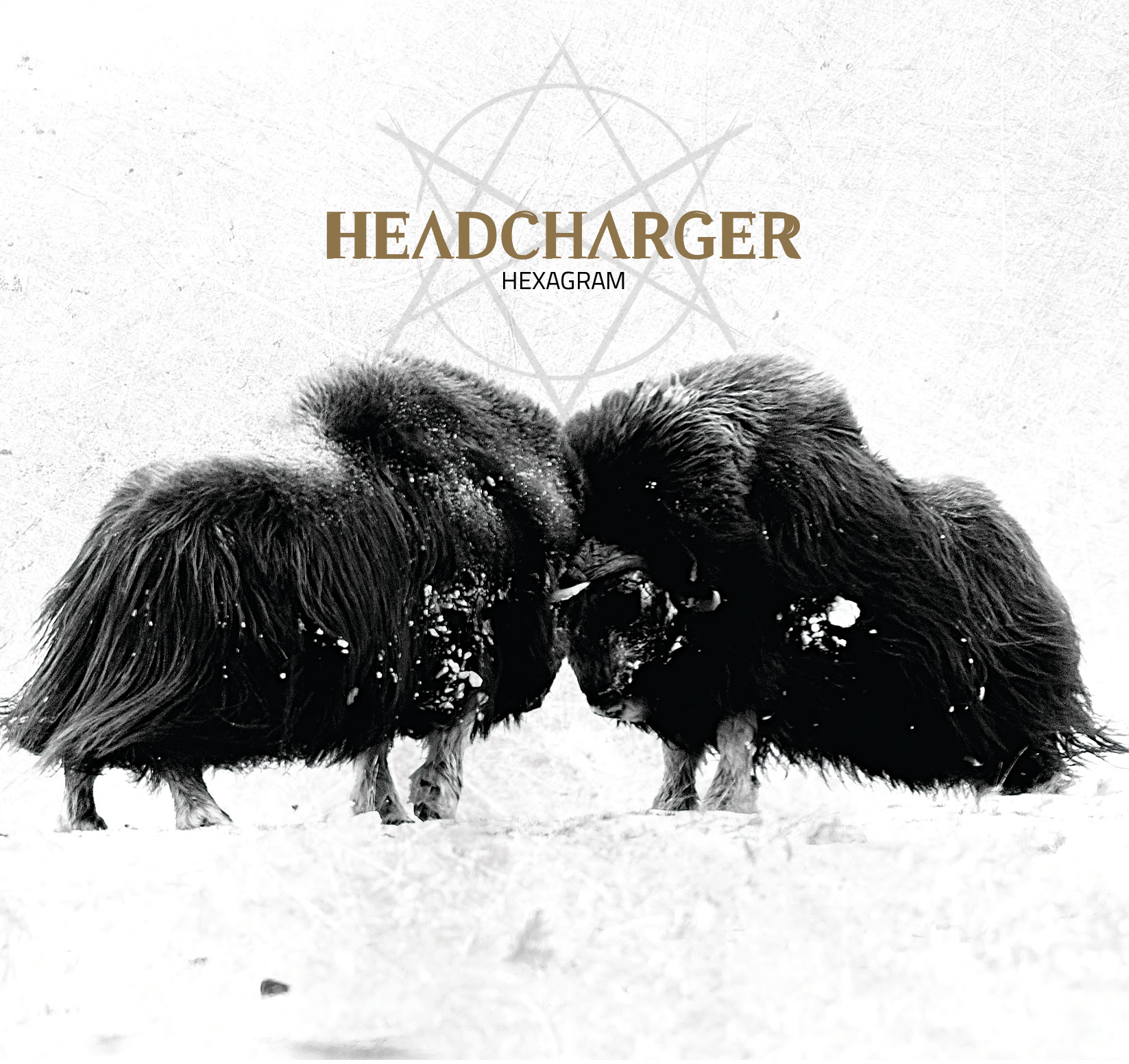 pochette Headcharger - Hexagram